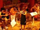 Karin Leitner plays Mozart Flute Concerto 2nd mvt