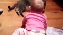 Vidéos Droles De Bébés   Funniest vidéo 2015,Vidéos Droles