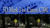 Canon 5D Mark 3 Codec VS. Canon C300 Codec