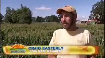 Corn Mazes and Agri-Tourism: America's Heartland Series