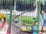 Bajrangi Bhaijaan l Official Full Song Video _ Bajrangi Bhaijaan _ Salman Khan _ Kareena Kapoor