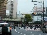 Shibuya : passage piéton (vu de loin)