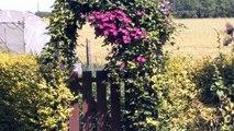 Le bassin de jardin de Pierre