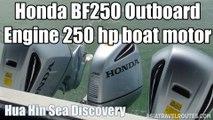 Honda BF250 Outboard Engine 250 hp boat motor Hua Hin Sea Discovery