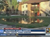 Storm damage in North Phoenix after Monday storms