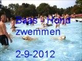 Baas - hond zwemmen in de Papiermolen