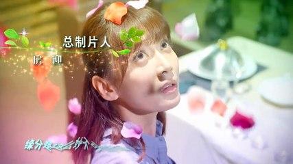 閃亮茗天 第79集 Tea Love Ep79