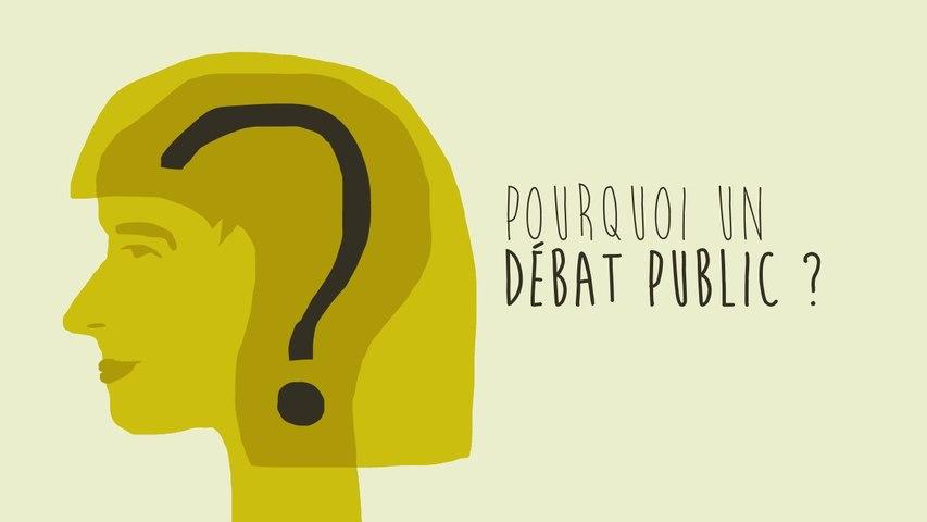 Le projet de parc éolien en mer de Dieppe - Le Tréport - Les enjeux du débat public en 8 minutes !