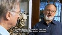 3-5 03 El genio de Charles Darwin-Richard Dawkins- Dios nos devuelve el golpe - subtitulado