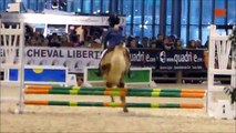 Salon du Cheval 2014 CSO A1