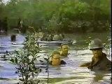 AFT History Video: Vietnam Divides AFT
