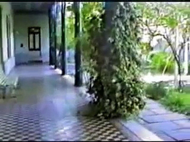 Dominicos en Argentina - Convento de Santo Domingo. MENDOZA
