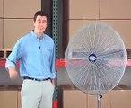 Pedestal Fan - 24 & 30  Pedestal Fans