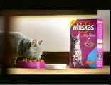Whiskas comercial - Cats food - mouse bungy jump