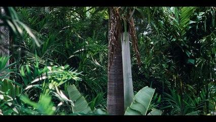 #4 M. Masrani découvre l'Indominus Rex - Extrait #4 M. Masrani découvre l'Indominus Rex (Anglais sous-titré français)