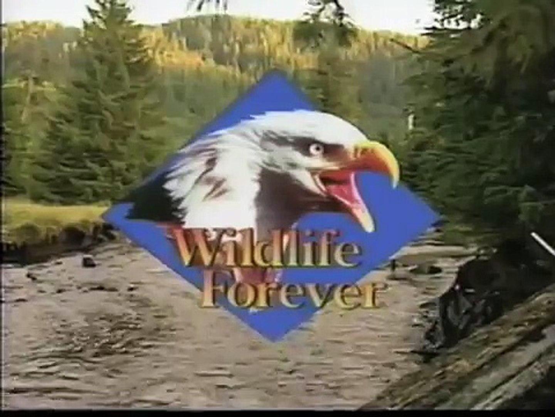 Wildlife... forever!