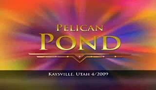 Pelican Pond