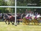 034TV - Konjogojstvena izložba i natjecanje - Zlatne grive zlatne doline 2011