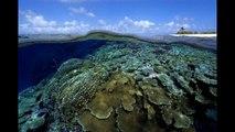 Îles Marshall beaux paysages - hôtels hébergement voyage voile
