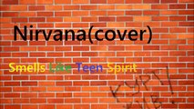 Nirvana-Smells Like Teen Spirit (Instrumental guitar cover)