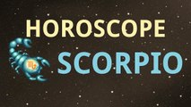 #scorpio Horoscope for today 07-02-2015 Daily Horoscopes  Love, Personal Life, Money Career