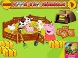 кормим животных