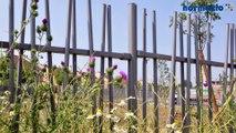 Installation clôture OOBAMBOO de normaclo : astuces de pose - système modulaire