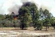 Devastating Myrtle Beach,SC Forest Fires Started In Conway