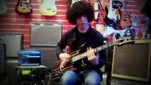 Avenged Sevenfold - Shepherd of Fire (Guitar cover + Tab)