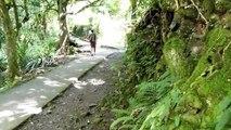 La cascade Les Délices - Sainte Suzanne - Réunion