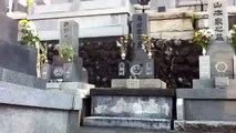 Japan Inari Shinto Shrine Gate in Buddhist Graveyard