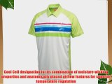 Puma Golf Mens Watercolour Stripe Polo Shirt 2013 Mens L Sharp Green Mens L Sharp Green