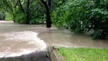 Toronto floods - Etobicoke Lawn Bowling Club
