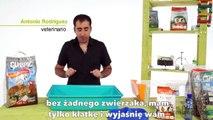 ŚWINKI MORSKIE - Przygotowanie klatki dla świnki morskiej cz. I