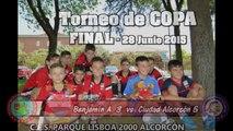 FINAL- COPA 2014-15 - C.F.S Parque Lisboa 2000 Alcorcón Benjamín A vs Ciudad Alcorcón