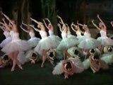 Swan Lake (1966) Act IV / Лебединое озеро / Le Lac des cygnes