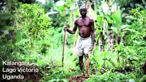 Detener el acaparamiento de tierras por la vida, la tierra y la justicia en Uganda.wmv