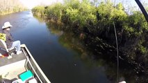 Fishing - Awesome Fishing - Catch And Release Big Fish - Best Fishing Videos Compilation,