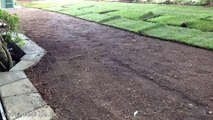 Time Lapse of Laying Sod