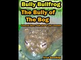 Bullying Stories for Kids - Bully Bullfrog - The Bully of the Bog Great story for Children