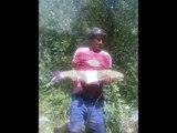 Pescuit la crap | Pescuit la crap in Maramures