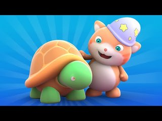 Looi the cat - colorful Turtle present, for kids