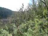 Annapurna Base Camp 2ème épisode