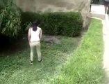 Une femme tente de caresser un crocodile dans son enclos