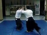 Aikido, suwari waza, basic ukemi, various techniques