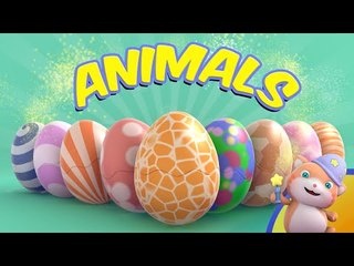 Learn English with Looi the Cat Surprise Eggs | Animals | Compilation
