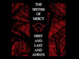 The Sisters of Mercy - Amphetamine Logic