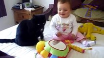 Funny cats and babies playing together   Cute cat  u0026 baby compilation