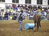 Parelli Demo - Reining Demo - UA Horse Festival