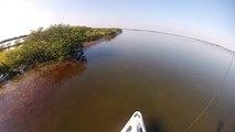 Mosquito Lagoon Indian River Lagoon Sight Fishing Redfish WASPcam